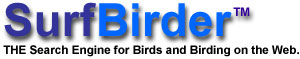 Surfbirder - The Search Engine for Birds and Birding on the Web